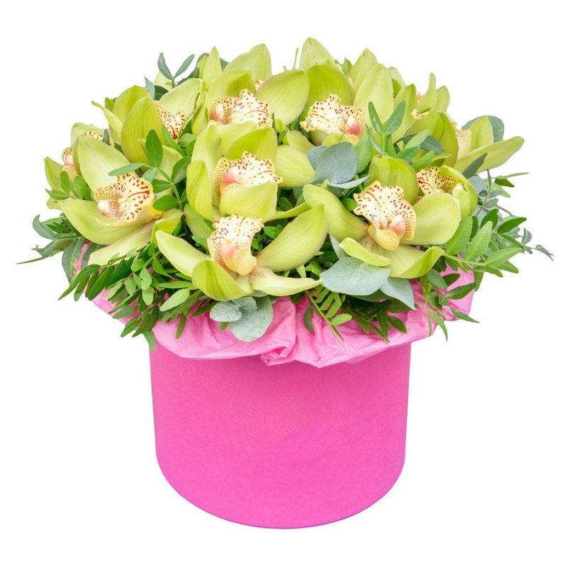 Flowers-Box 11 cymbidium orchids