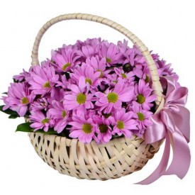 Chrysanthemum basket