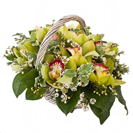 Orchid basket with chamelacium