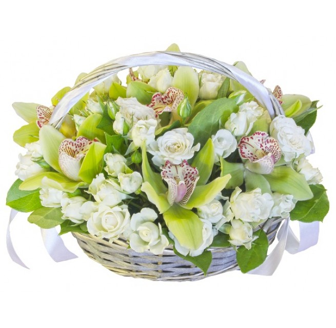 Basket with green orchids