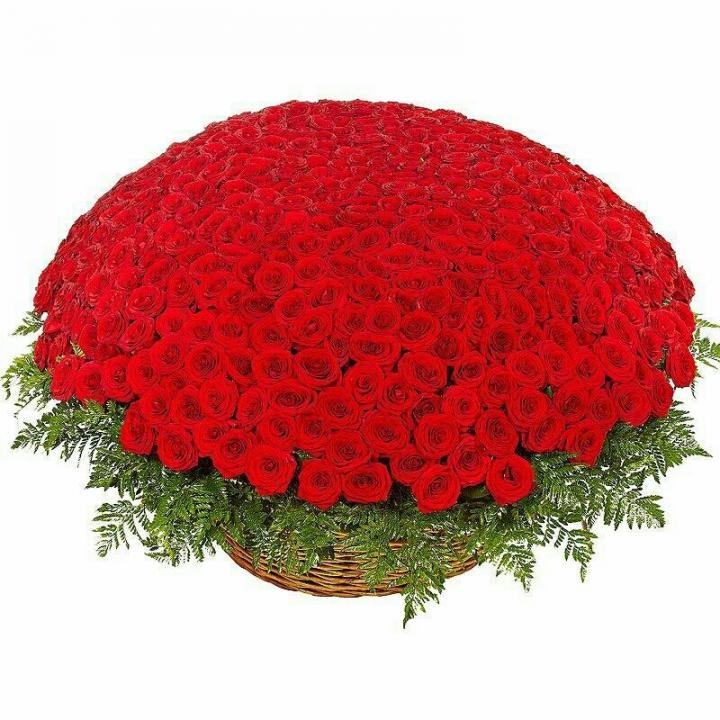 Basket 301 Red rose