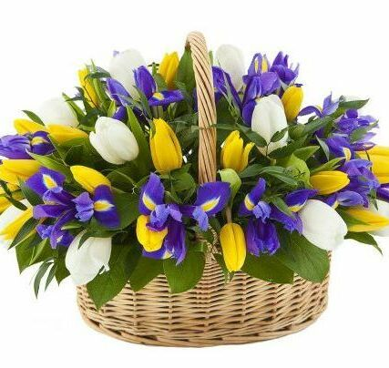 Basket with tulips and irises