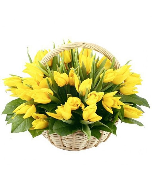 Basket with yellow tulips