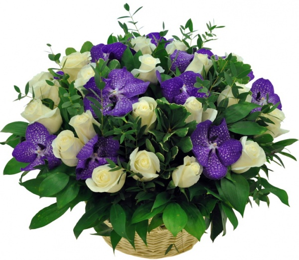 Basket with blue Vanda