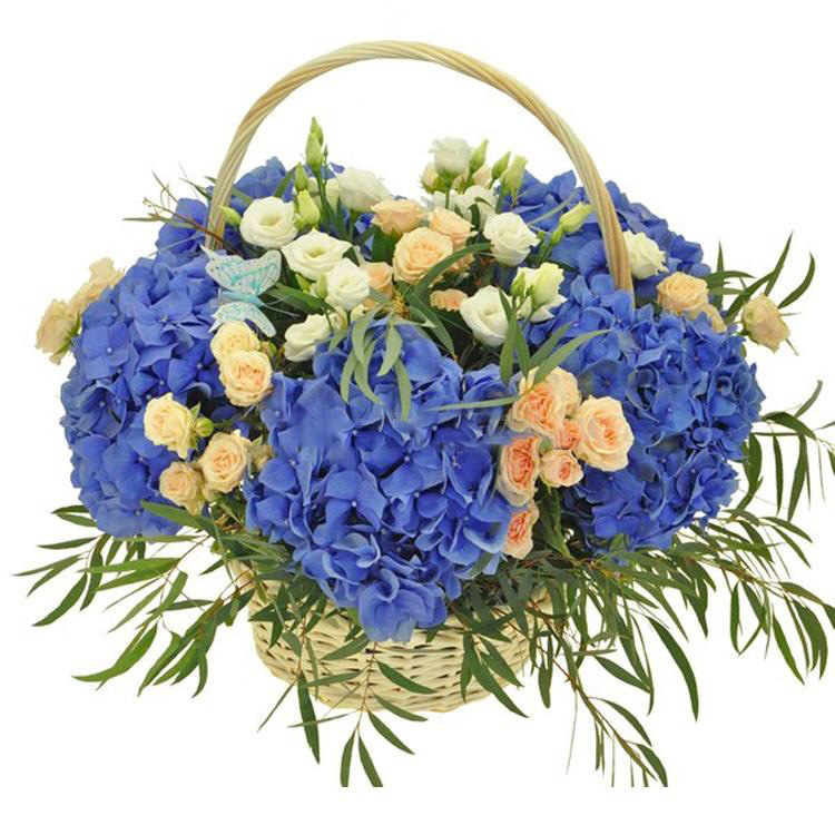 Basket with blue hydrangeas