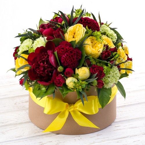Flowers-Box roses and cellosis