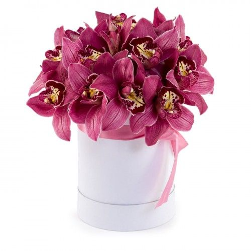 Flowers-Box 17 pink orchids